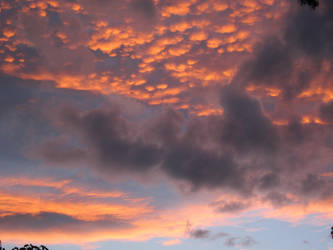 Shadowed Sunset by Golden-Penguin