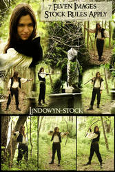Elven Exclusive Stock by lindowyn-stock