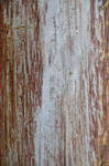 Textures for Pendlestock 3 by lindowyn-stock