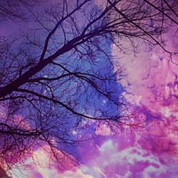 Purple Trees by Kryna98