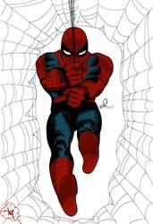 Spiderman by jdotjam