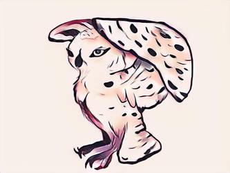 Snowy owl by ApocalipsePony