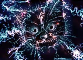 Electro Cat by Pickador