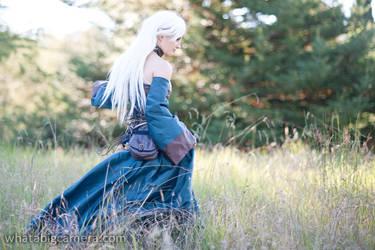 Dragon Age by KrisEz