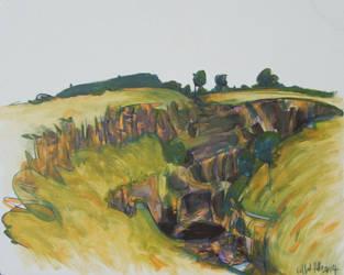 study of LaLa Falls, Victoria 2014 by pheelix-dot-com