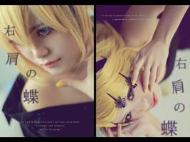 Butterflies 2 by AsumiChan
