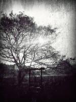 Rising light by satyam9999