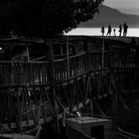 photographers by guzin-guzin