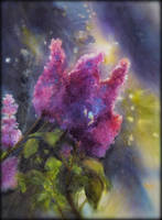 Wet Lilacs by EarlyOctober