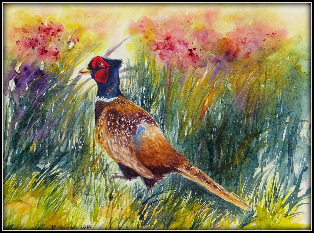 Card1 Pheasant by EarlyOctober