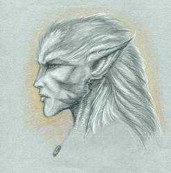 Elf Werewolf by krukof2