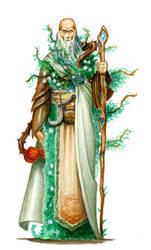 Druide by krukof2