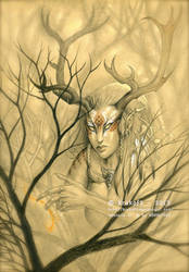 Adalaria - The Huntress of Luna Cee by krukof2