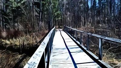 Boardwalk by Schvenn