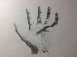 Five-Fingered Hand by Bahsuo