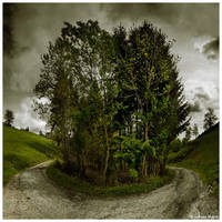 Around The Bush by JeRoenMurre