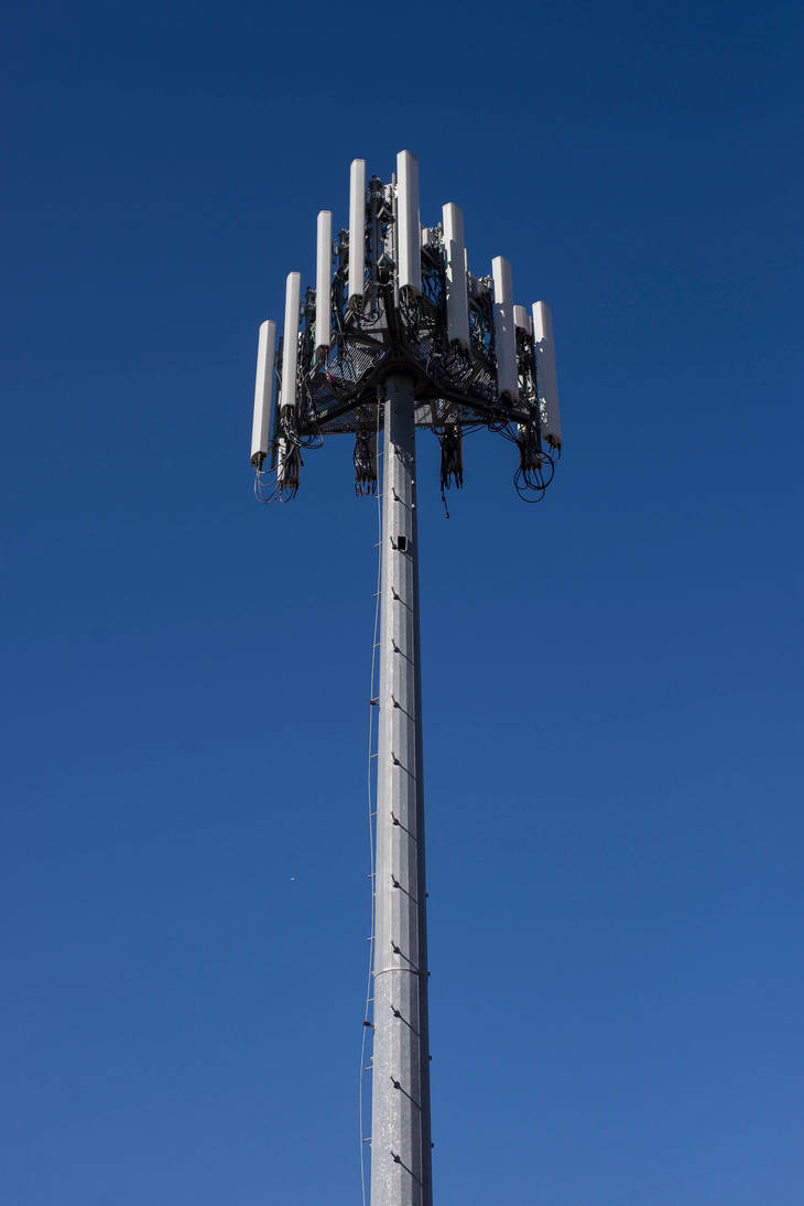 Cell Tower Blossom by markv12