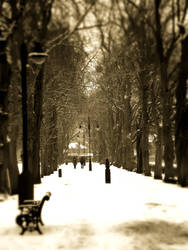 down through the park on a cold snowy day by stucker1987