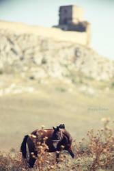 Enisala Fortress by Sssssergiu