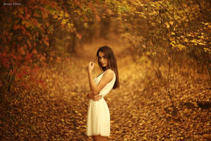 autumn by Sssssergiu