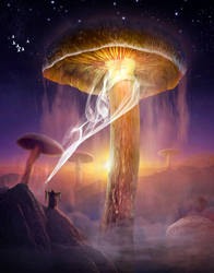 Mushrooms by sasha-fantom