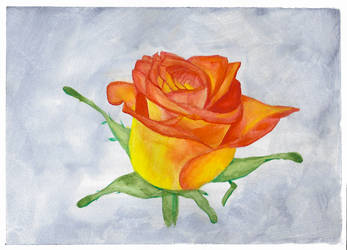 How To Paint a Rose in Gouache by Steven-Powers-SMP