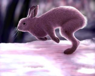Rabbit by shadowkitsunekirby