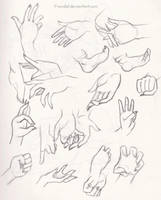 .: Hand Practices (and feet) :. by Luuuna-sama