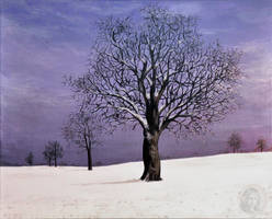Purple winter by NickMears
