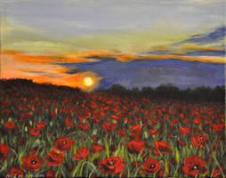 Poppy field by NickMears