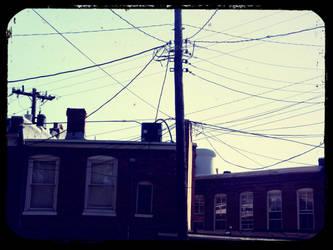 Wire by EchoGrey