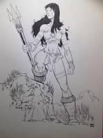 Amazonian Woman by aminamat