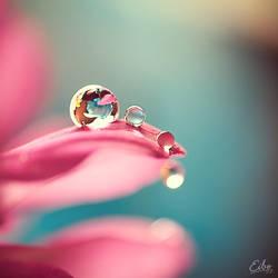 Jewels by Eibography