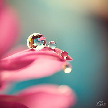 Jewels by Eibography