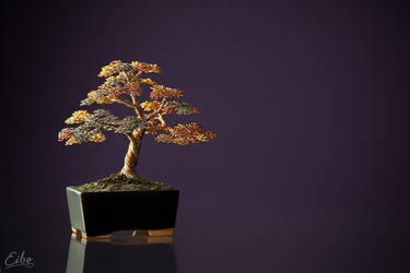 Bonsai 2 by Eibography