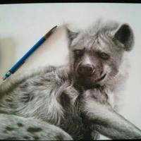 Resting Hyena by chandito