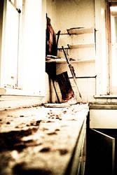 Abandoned Mental Asylum 15 by YeahPez