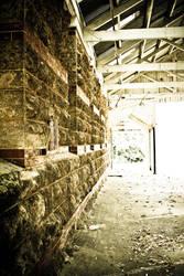 Abandoned Mental Asylum 19 by YeahPez
