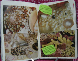 1st Altered Book 18, Favorites by angelstar22