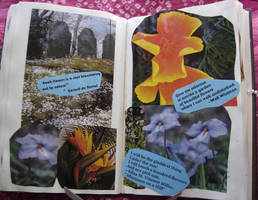 1st Altered Book 26, Favorites by angelstar22