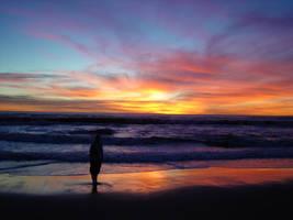 Santa Monica Beach, 2006 by angelstar22