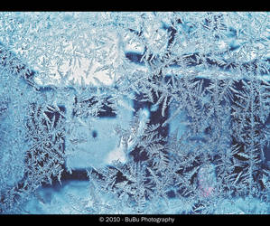 .:Ice Crystals:. by bogdanici