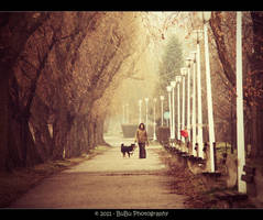 .:Stroll:. by bogdanici