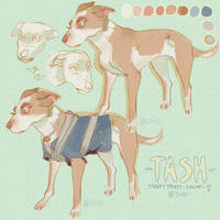 Tash - character concept adopt - OPEN by Sivsi