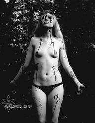 Kitten by Against Thy Will Photography by KittenNightmare