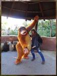 Disneyland Paris - King Louie by Tabascofanatikerin