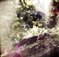 Last light by psychiatrique