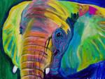 Pachyderm by dawgart