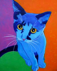 Kitten Blue by dawgart