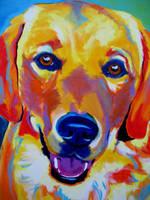 Sheamus by dawgart